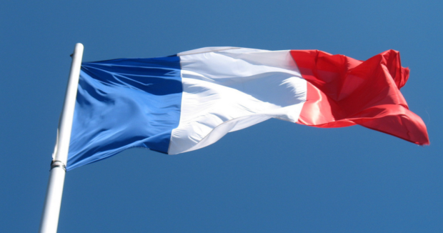 Increased efforts on the french market