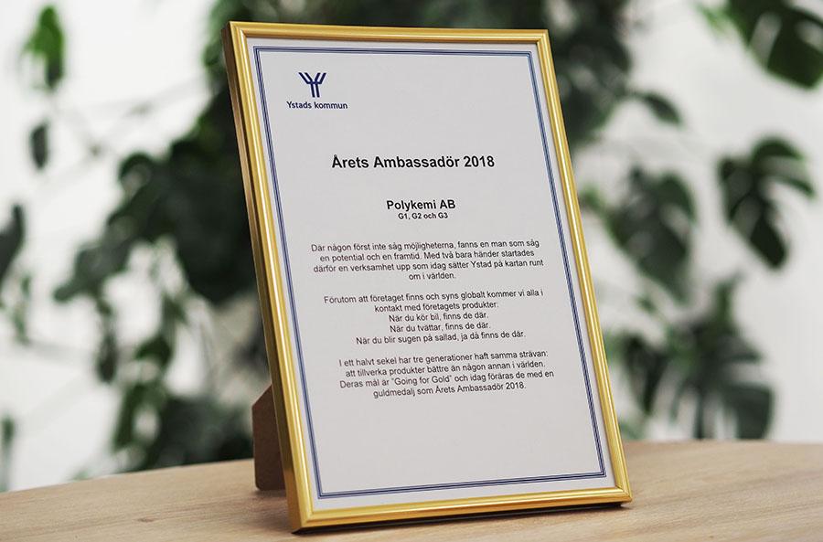 Ambassador of the year 2018